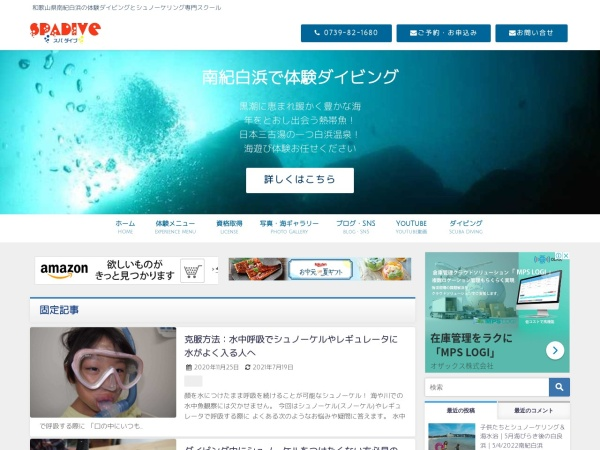 Screenshot of spadive.com