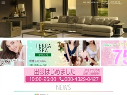 Screenshot of terraspa.jp