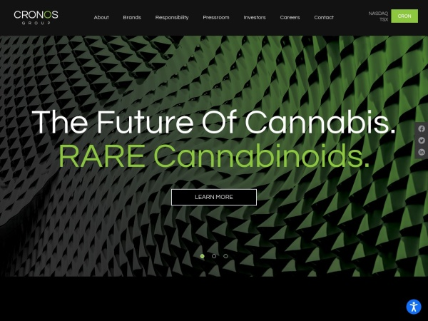 Screenshot of thecronosgroup.com