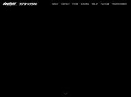 Triton Lite WordPress Theme example