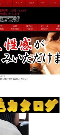 Screenshot of tokyoplaza.biz
