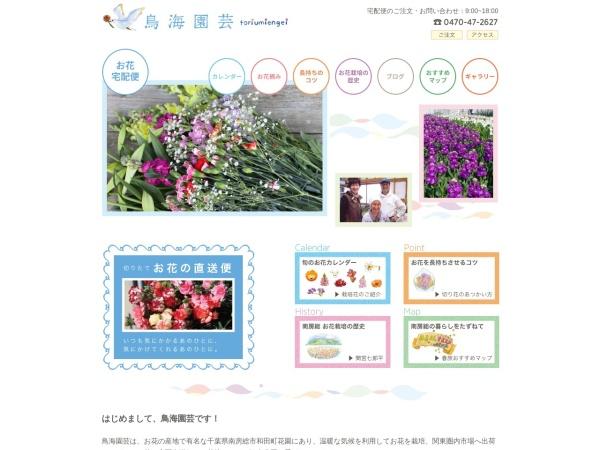 Screenshot of toriumiengei.jp