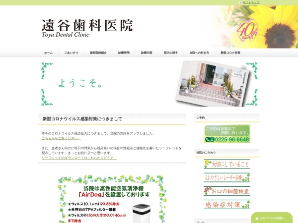 Screenshot of toya-dental.com
