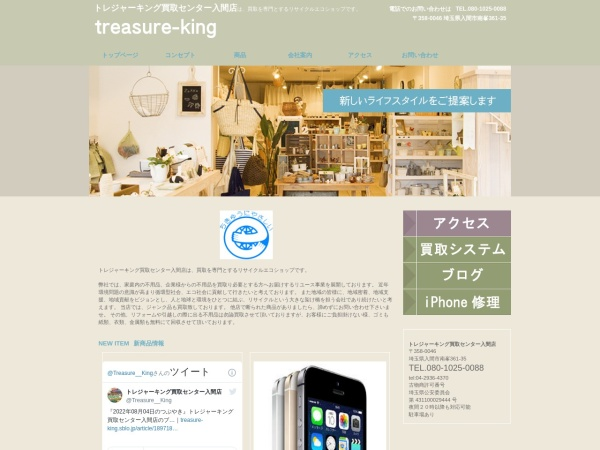 Screenshot of treasure-king.com