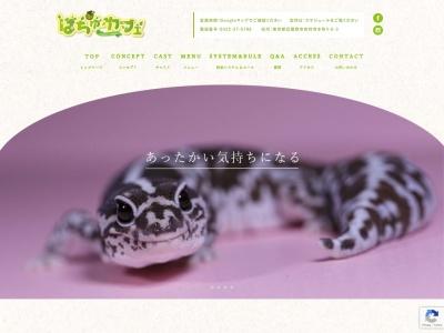 東京・吉祥寺の爬虫類カフェ「はちゅカフェ」
