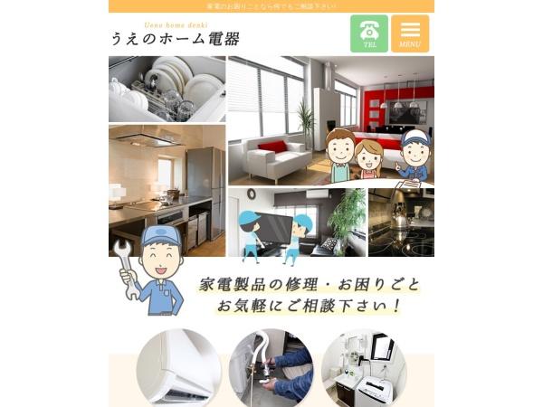 Screenshot of ueno-homedenki.com
