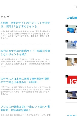 Screenshot of vikingpark.jp