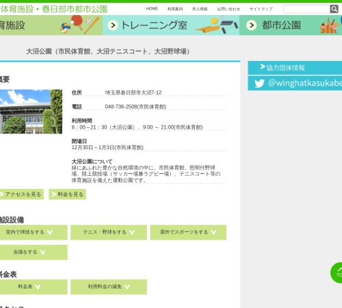 Screenshot of winghat.info