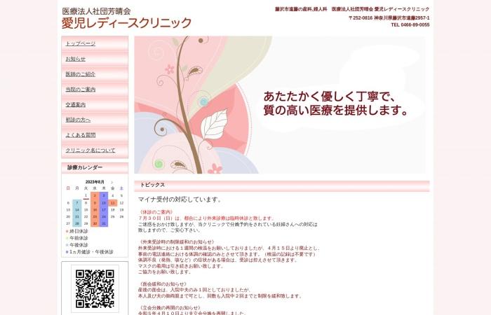 Screenshot of www.aiji-ladies-clinic.com