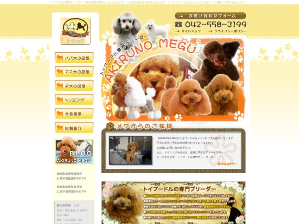 Screenshot of www.akiruno-megu.com