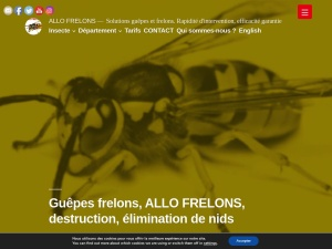 Frelons, frelons asiatiques, guepes