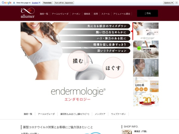 Screenshot of www.allumer.jp