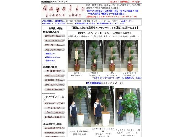 http://www.angelic-fs.com