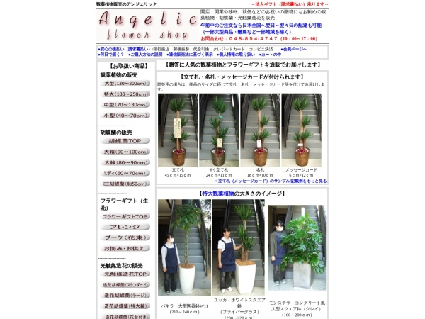 Screenshot of www.angelic-fs.com