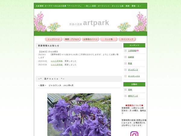 Screenshot of www.artpark878.com