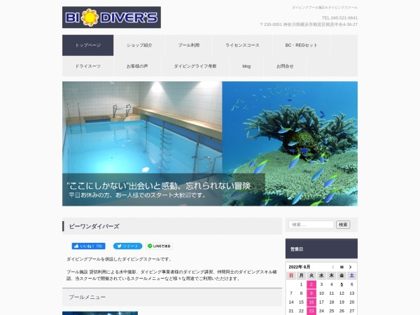 Screenshot of www.b1divers.com
