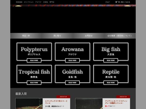 Screenshot of www.bayside-aqua.com