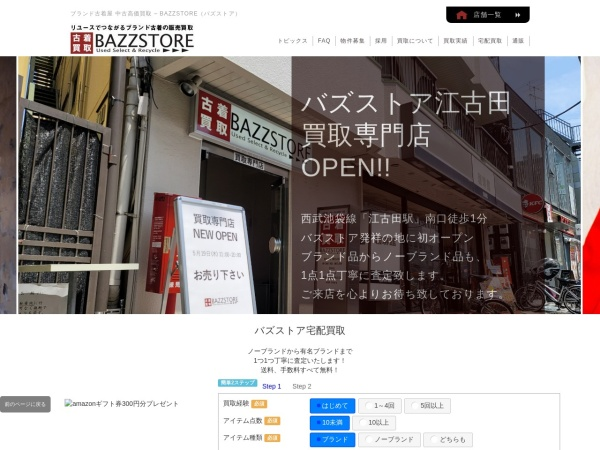 Screenshot of www.bazzstore.com