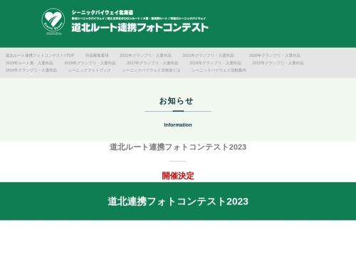 Screenshot of www.biei.org