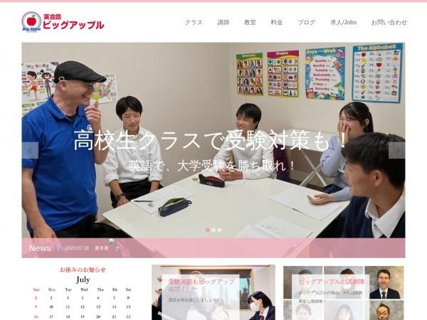 Screenshot of www.bigapple-web.com