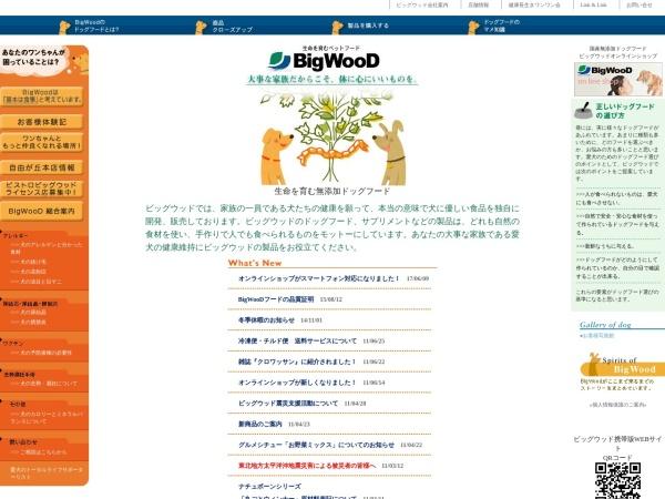 Screenshot of www.bigwood.co.jp