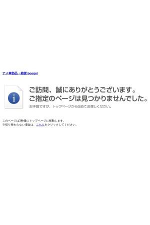 Screenshot of www.booget.com