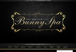 Screenshot of www.bunnyspa.net