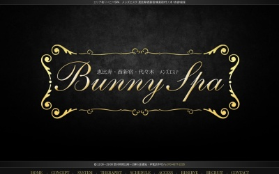Screenshot of www.bunnyspa.net