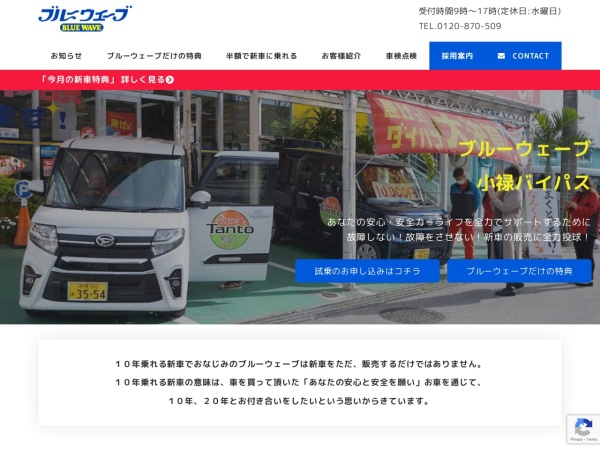 Screenshot of www.car-bluewave.com