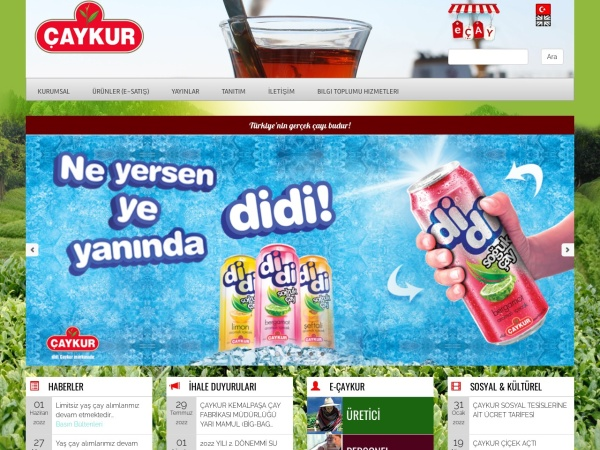 Screenshot of www.caykur.gov.tr