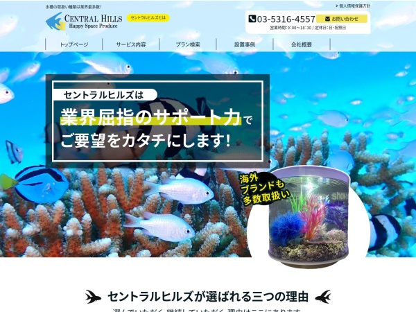 Screenshot of www.centralhills.co.jp