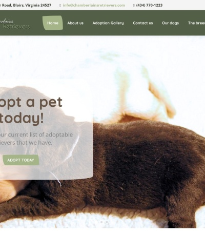 Screenshot of www.chamberlainsretrievers.com