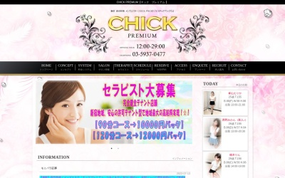 Screenshot of www.chick-premium.com