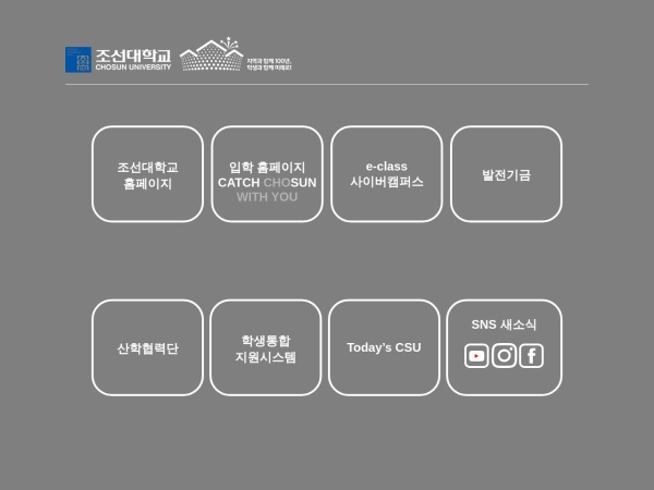 Screenshot of www.chosun.ac.kr