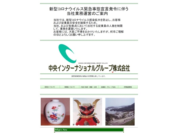 Screenshot of www.cig-ins.co.jp