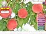http://www.city.fukushima.fukushima.jp/