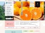 Screenshot of www.city.kitsuki.lg.jp