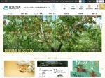 http://www.city.minami-alps.yamanashi.jp/