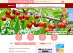 Screenshot of www.city.sagae.yamagata.jp