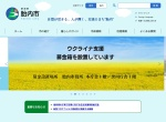 Screenshot of www.city.tainai.niigata.jp