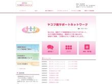 Screenshot of www.cjdnet.jp