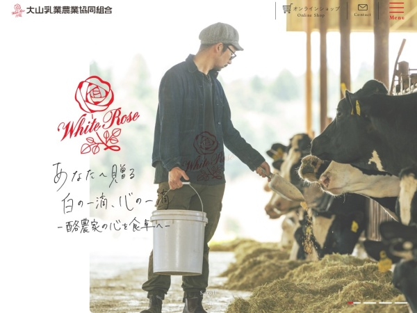 Screenshot of www.dainyu.or.jp