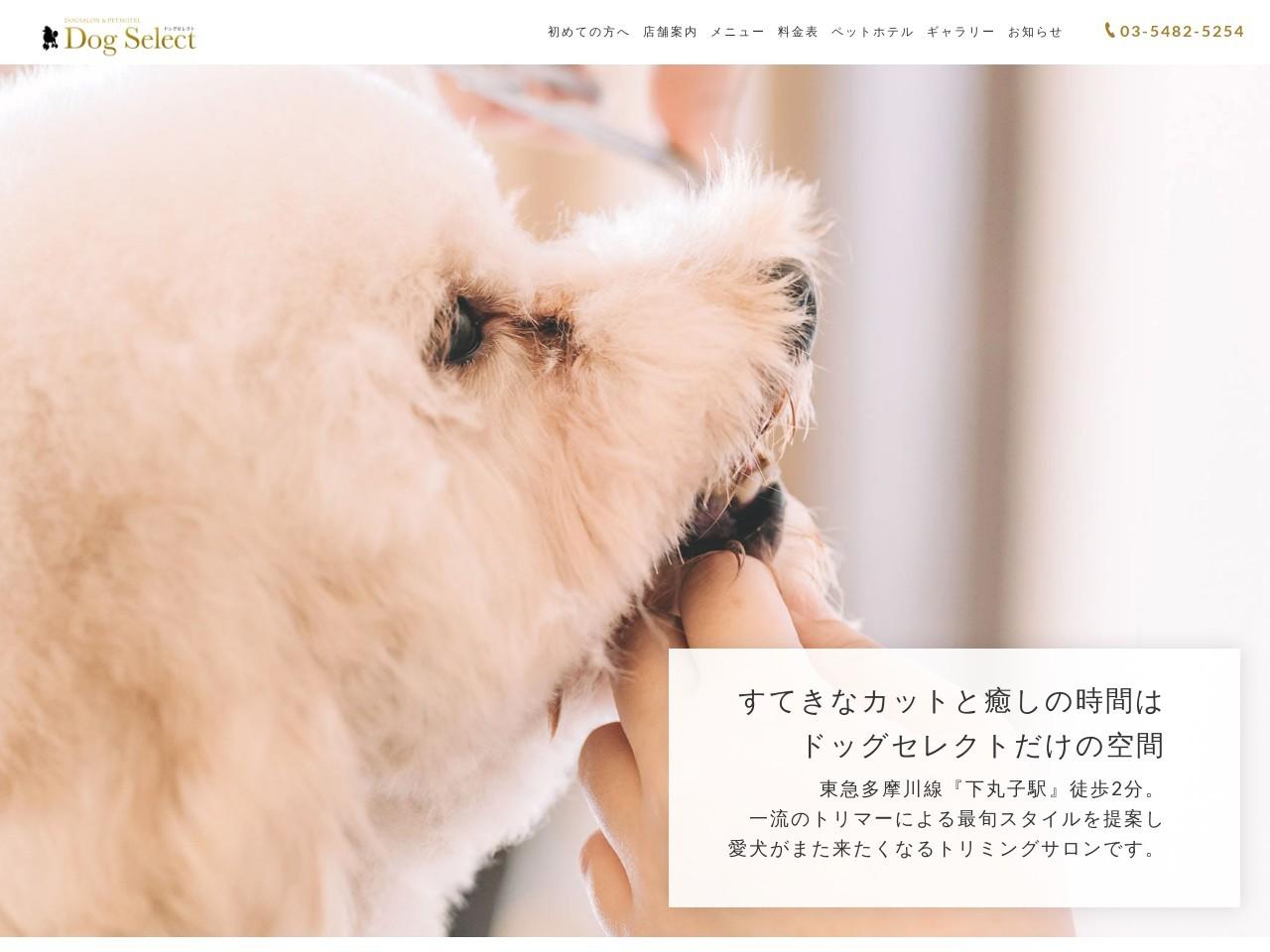DogSelect