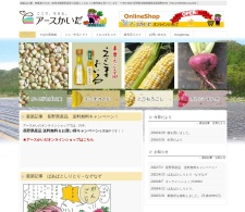 Screenshot of www.earth-kaida.com