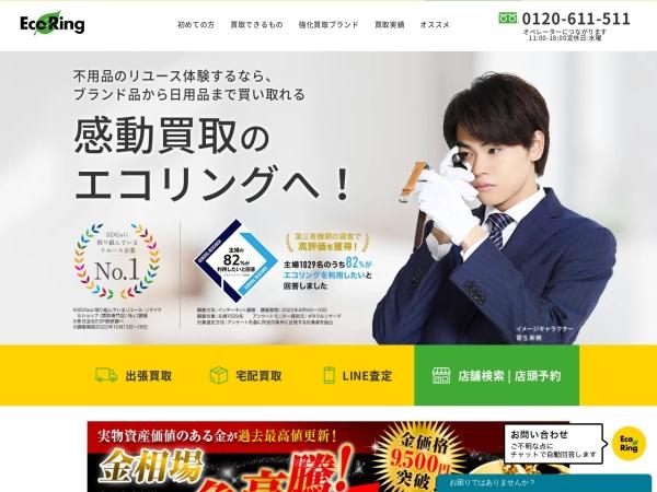 Screenshot of www.eco-ring.com