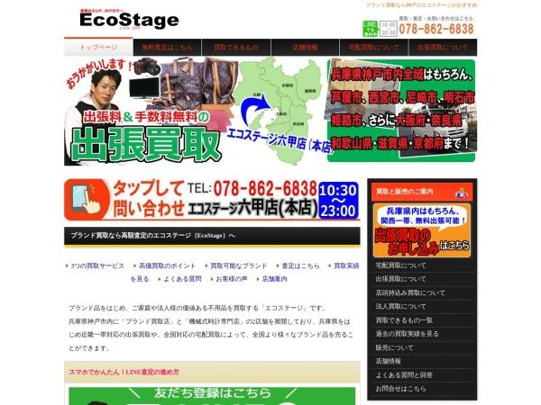Screenshot of www.ecostage.net