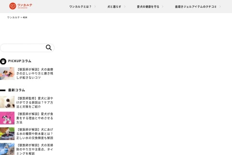 Screenshot of www.el-perro.jp