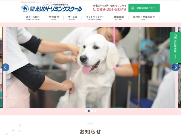 Screenshot of www.erika.co.jp