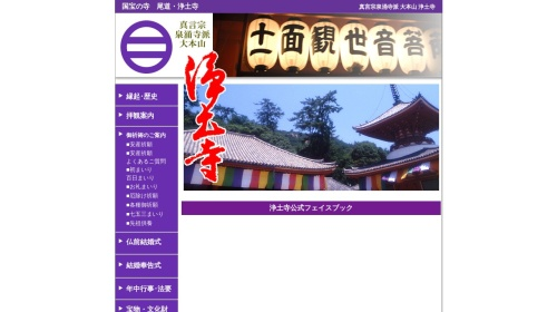 Screenshot of www.ermjp.com