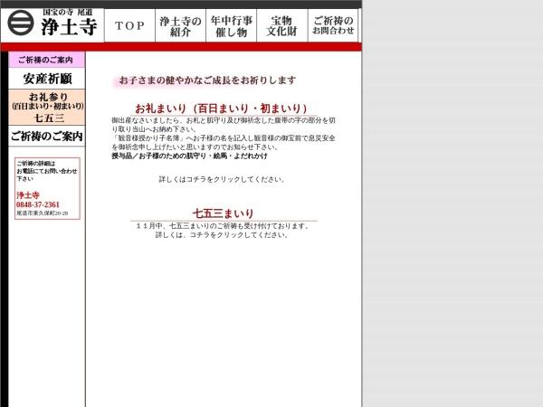 Screenshot of www.ermjp.com
